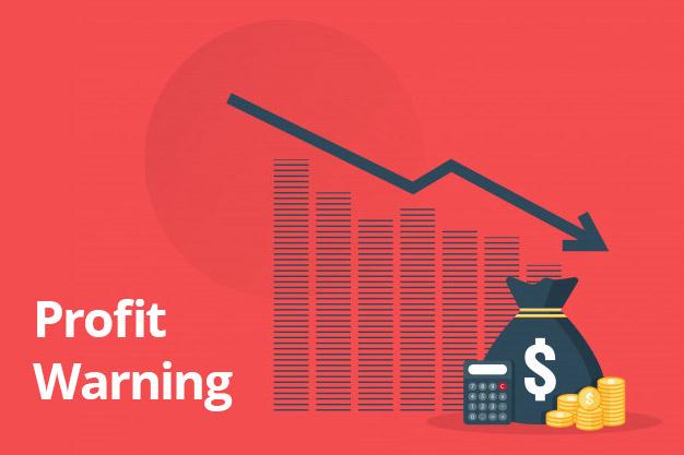 profit warning guida